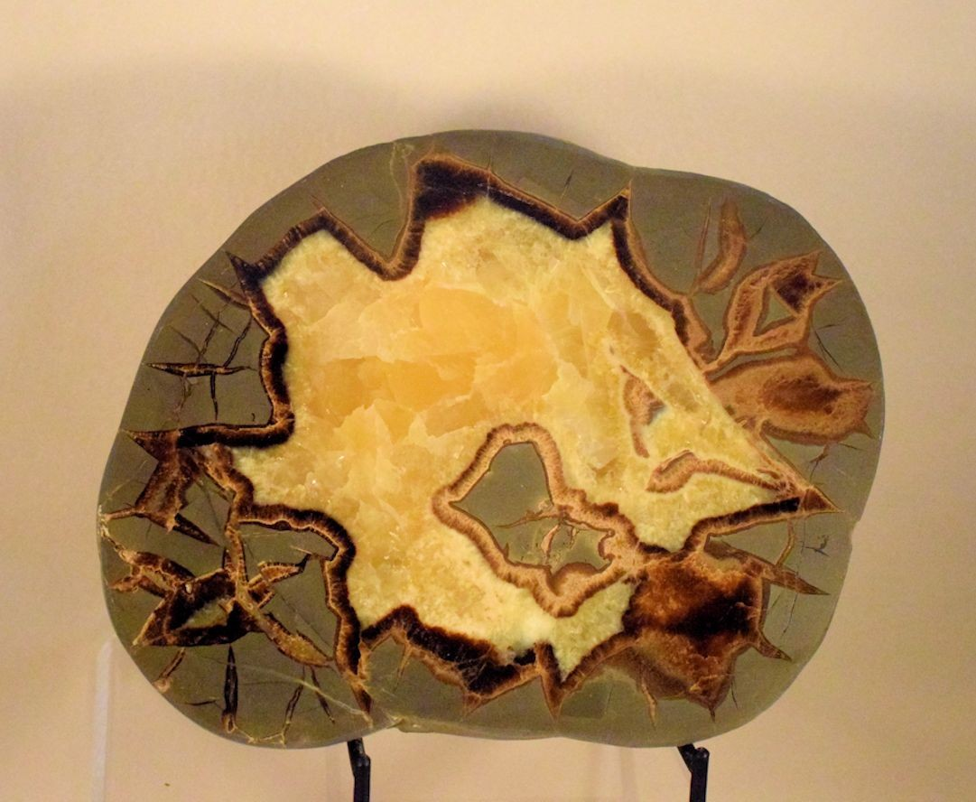 M0085 Septarian Concretion Slice