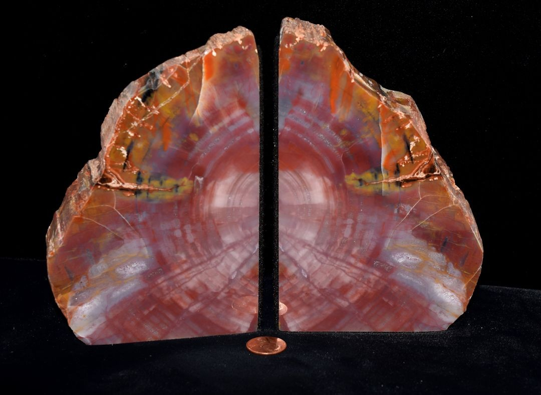 Hd0258 Petrified Wood Bookends (SOLD)