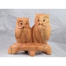 HD0299 Chinaberry Wood Carved Owls