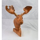 HD0309 Chinaberry Wood Moose Head with Mistletoe Scars