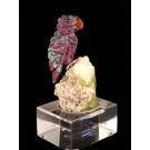 HD0186 - Parrot in Ruby and Zoisite by Peter Mueller (SOLD)