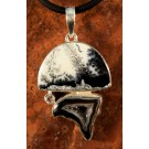pds0498 Dendritic Agate And Geode Pendant